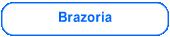 Condado de Brazoria