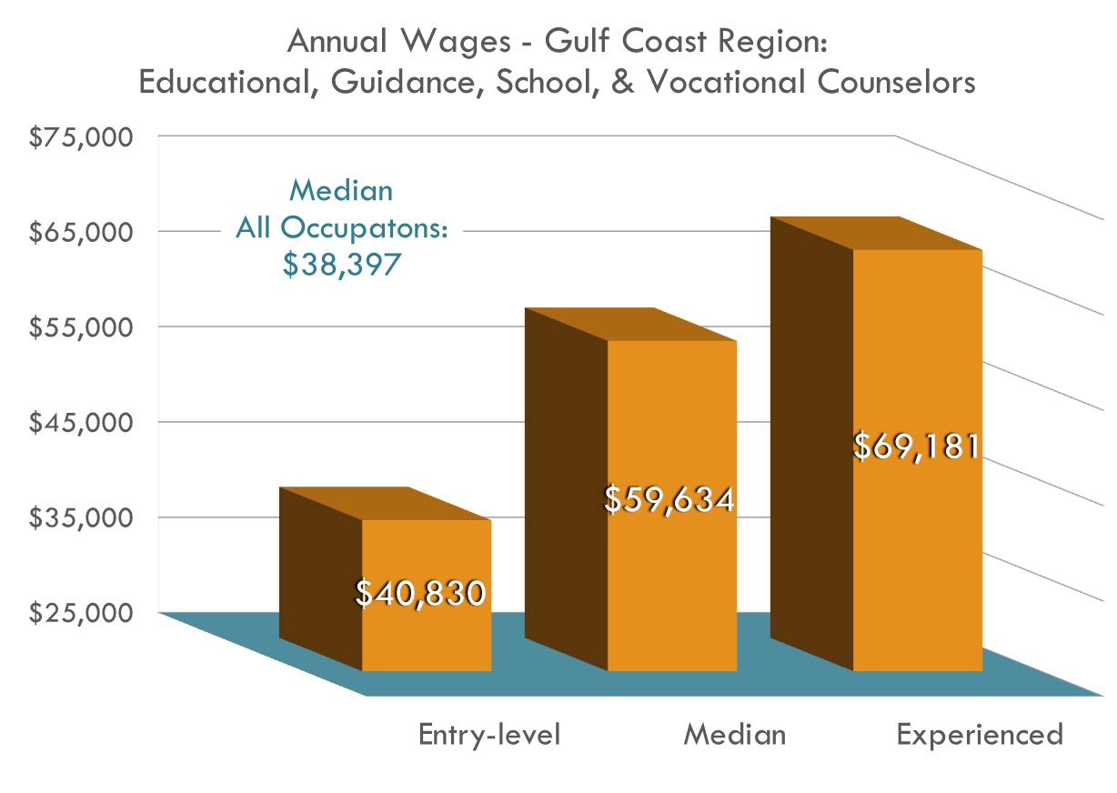 Counselors Wages